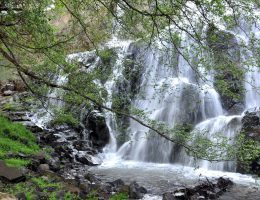 waterfalls tours Cyprus