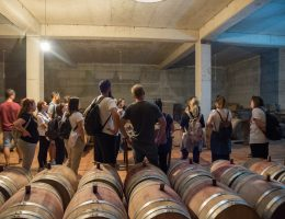 wine tour for groups